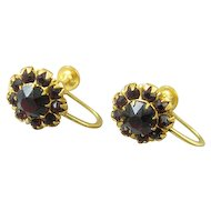Garnet Rhinestone Earrings