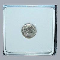 AR Denarius Venus Silver Coin