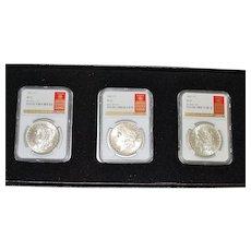 Set of Three Morgan Dollar Coins