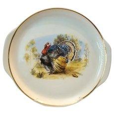 Large Vintage Homer Laughlin Round Thanksgiving TURKEY PLATTER Tray 1940s