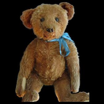"Antique Cinnamon 16"" Steiff, Blank Button-Era Bear"