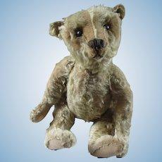 "Antique 20"" Center Seam Steiff Bear"