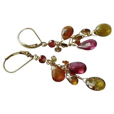 Multi-Color Tunduru Sapphire Gem Earrings with Gold Fill Lever Backs