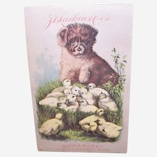 JD Larkin Boraxine - Puppy with Baby Chicks - Victorian Trade Card