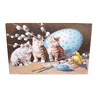 Postally Used Embossed Postcard - 3 Kittens with Spring Chick