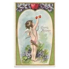 Postally Unused Valentines Day Post Card - Cupid Pumping Iron - Cupid's Message - Violets - Forget Me Not