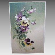 C.1960 CATHERINE KLEIN Postcard - Purple Pansies!