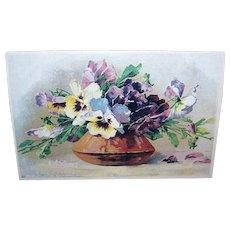C.1960 CATHERINE KLEIN Postcard - White & Purple Pansies in a Pot!