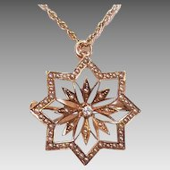 ANTIQUE VICTORIAN 14K Gold, Diamond & Natural Pearl Starburst Pin/Pendant Combo!