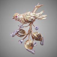 14K Gold 1.72CT TW Diamond Ruby Bird Pin