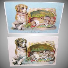 RARE FIND - Victorian Trade Card & Original Die Cut - Dog with Her Puppies