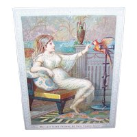 VICTORIAN Greeting Card - Happy New Year, Lounging Lady, Parrot
