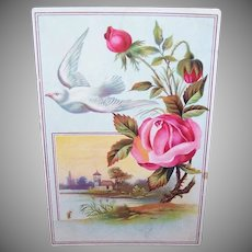 VICTORIAN Trade Card - Woolson Spice Co, Lion Coffee, Pink Rose, White Bird