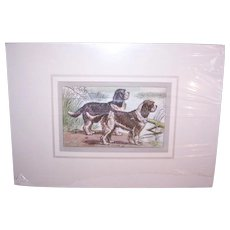 Vintage C.1931 Matted P. Mahler Colored Etching/Photogravure of a Pair of Spaniels