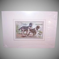 Vintage FRENCH PRINT - P. Mahler Colored Etching/Photogravure of a Pair of Spaniels, Matted