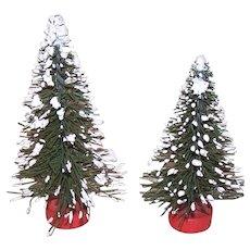 2 Christmas Bottle Brush Trees