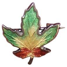 Sterling Enamel Maple Leaf Pin