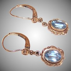 Gold Filled Blue Paste Earrings