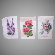 3 Vintage Tobacco Silks - Digitalis, Morning Glories, Clover