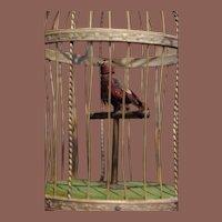 ** Singing Bird Cage Music Box ***