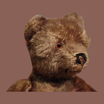 ** Steiff Bear Dark color ***
