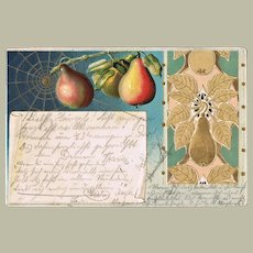 Art Nouveau Postcard with Pears. Embossed, Litho. 1902