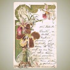 Art Nouveau Postcard 1903. Embossed Lithograph