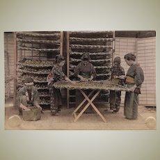 Antique tinted Japanese Albumen Photo with Ladies at Work