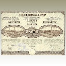 Old Romania Stock Certificate Steam Brick Factory 1000 Lei, 1925
