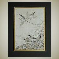 Imao Keinen Woodblock Print. Birds and Reed.
