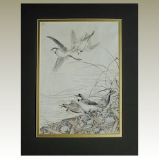 Imao Keinen Woodblock Print. Birds and Reed.