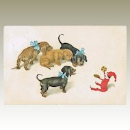 Dachshund watching Toy. Vintage Postcard from 1914