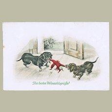 Sausage Dogs and Doll. Vintage Postcard