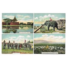 Collection of 14 Old Postcards from Myanmar former Burma c. 1910