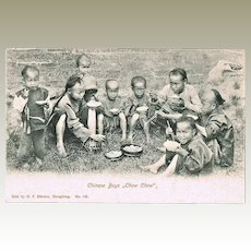 Old china Postcard Chinese Boys Chow Chow