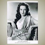 Deborah Kerr Autograph on 8 x 12 Photo CoA
