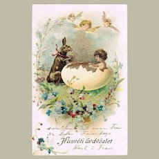 Happy Easter Lithographed Postcard. Bunny and Baby in Egg. 1902