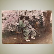 Japanese Albumen Photo with Three Ladies, Plum Blossoms. 1880s