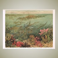 Antique Chromo Lithographs with Deep Water Scene 1898