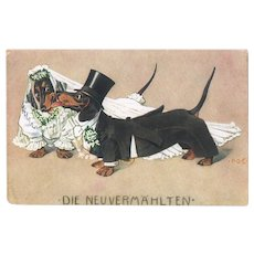 Funny Dachshund Postcard Just Married 1916