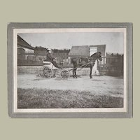 Lady in a Horse-drawn Carriage. Antique Photo from 1903