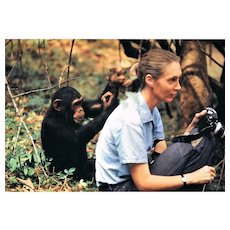 Jane Goodall Autograph on 12 x 8 Photo CoA