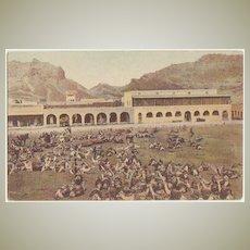 Aden Vintage Postcard with Camel Market.