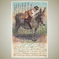 Boy riding a Donkey: Vintage Postcard from 1903
