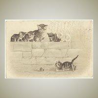 Kittens Cute Vintage Postcard from 1901