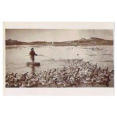 South China Photo Postcard: Man and his Ducks