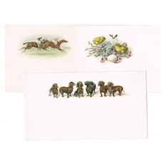3 vintage Tickets, Dachshund, Jockeys, Chicks. app. 1910