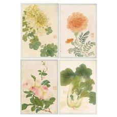 Chinese Album with 12 Original Paintings