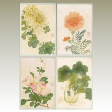 Chinese Album with 12 Original Paintings