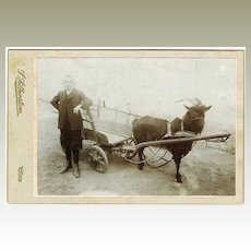 Boy and Goat Cart Cabinet photo from Austria